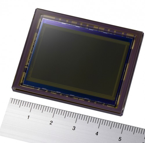 Large vs. Small Sensors — Pro's and Con's