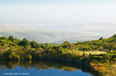 Pond and Drake's Estero, Mt. Vision, Pt. Reyes NS, California