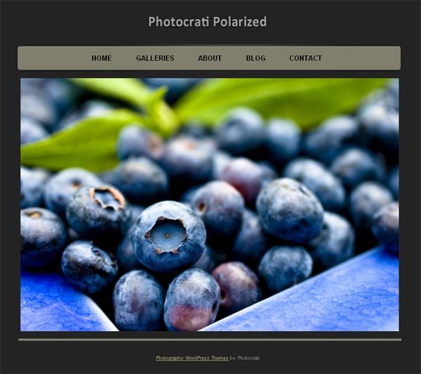 10 Professional Premium WordPress Themes for Photographers