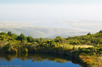 Pond and Drake's Estero, Point Reyes. Echoes don't have to be overt to be effective.
