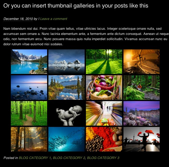 photocrati-gallery-post