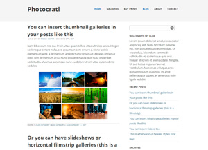 10-stop wordpress photography themes 4