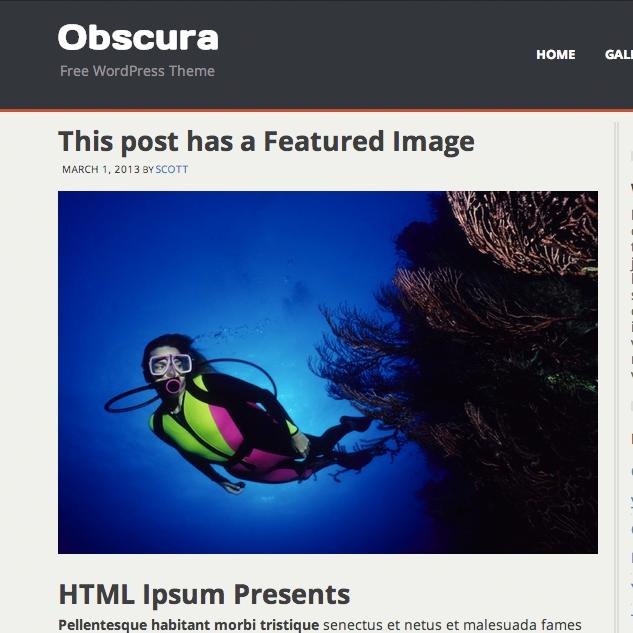 Obscura Free Wordpress Photography Theme