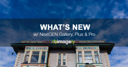 NextGEN Pro's New Cart Menu Icon & Direct To Pro Lightbox Features
