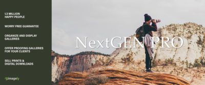 A New Look for NextGEN Gallery
