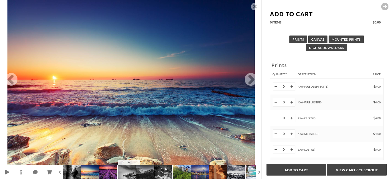 For this, we recommend NextGEN Pro. It's one of the most popular WordPress plugins for photographers and comes with multiple galleries as well as e-commerce extensions. Fortunately for Photocrati customers, NextGEN Pro is included!