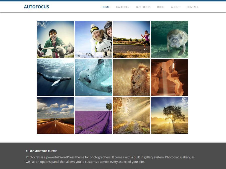 Autofocus Blue WordPress Theme