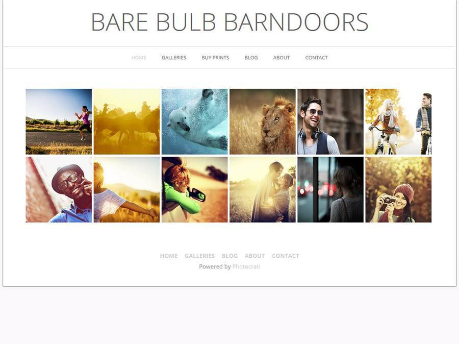 Bare Bulb Barn Doors WordPress Theme