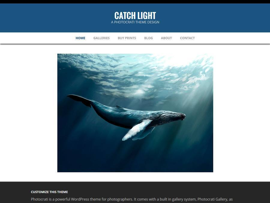 Catchlight Blue WordPress Theme