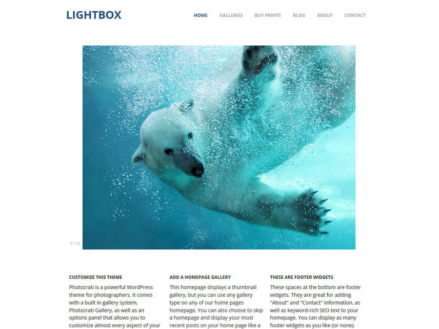 Lightbox WordPress Photography Theme