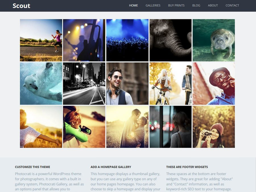 Scout WordPress Theme