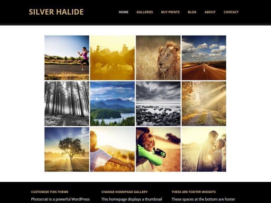 Silver Halide 3