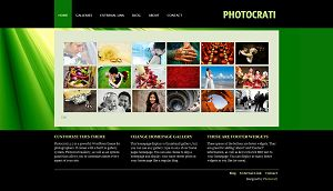 vignette wordpress themes for photographers